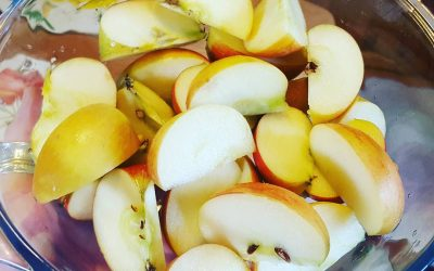 Raw Probiotic Apple Cider Vinegar