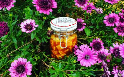 Fermented Pineapple Kimchi